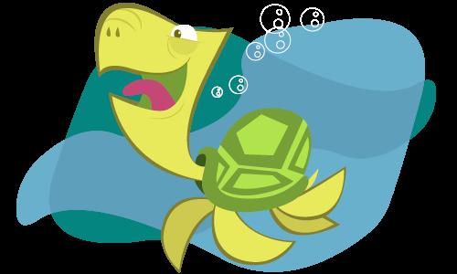 tartaruga-videos